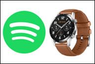 Spotify en Huawei GT2